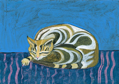Cat with Pink Stripes
