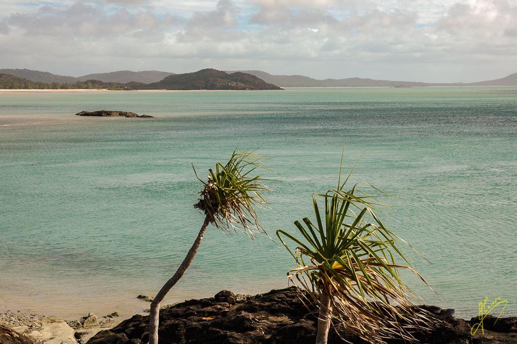 Cape York, Queensland.