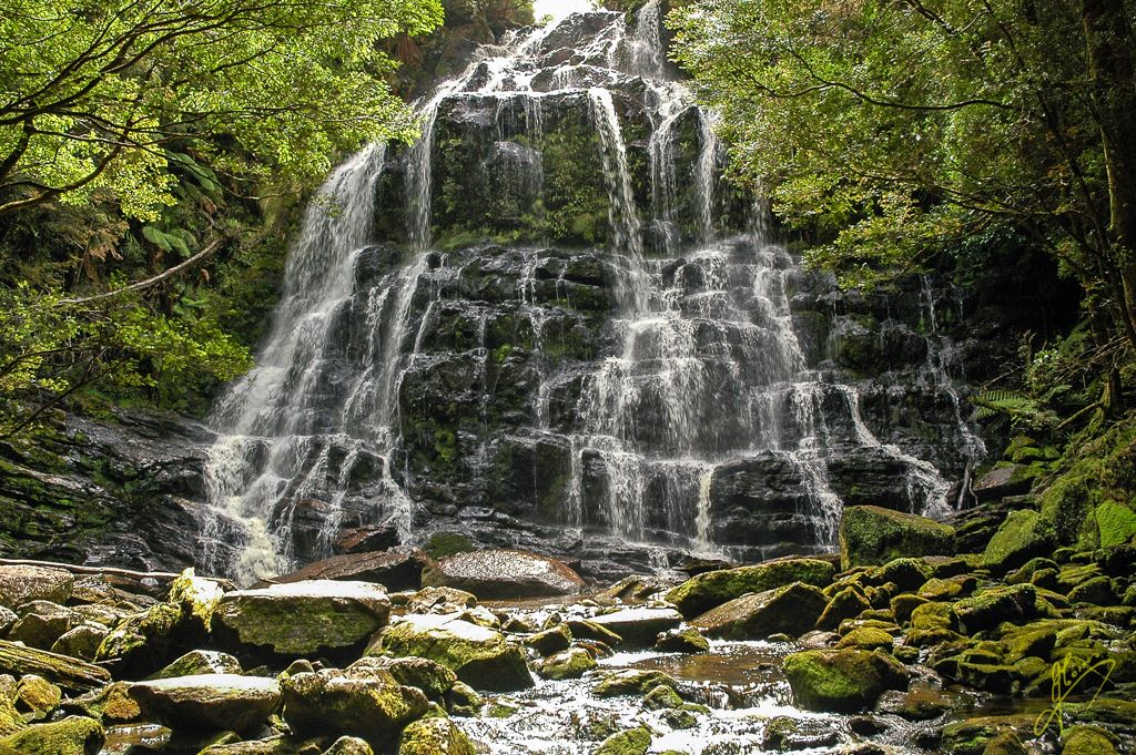 Nelson Falls, Tasmania.