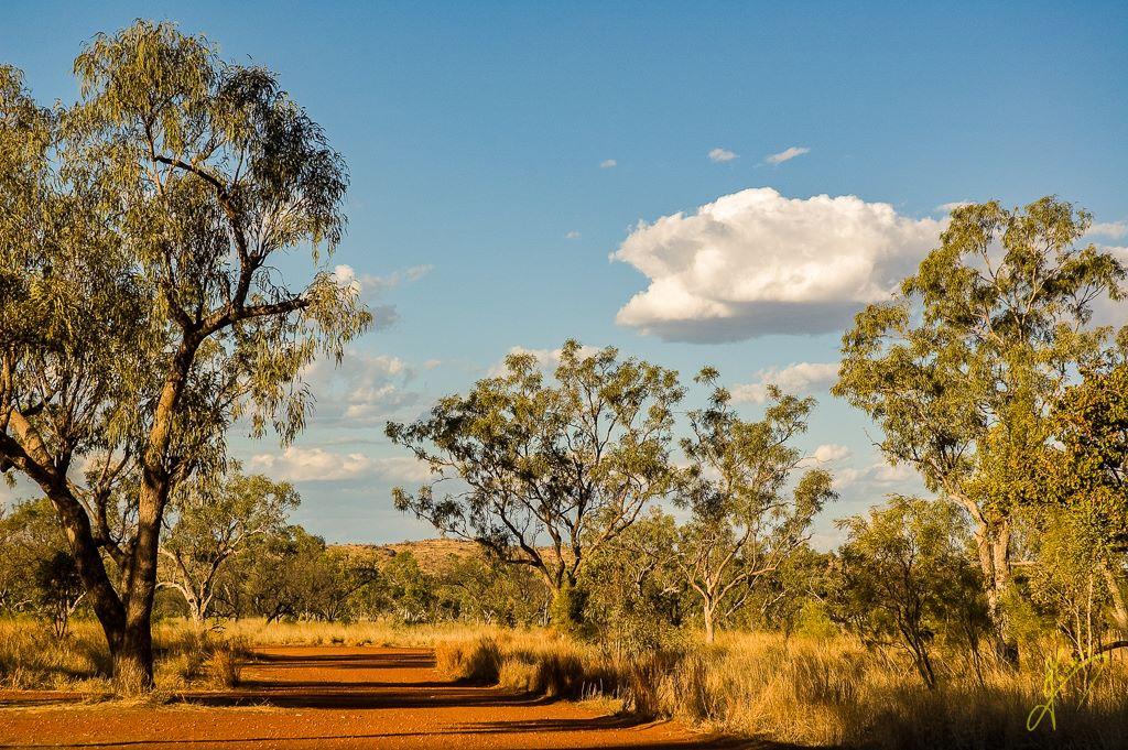 Tunnel Creek National Park, Western Australia.
