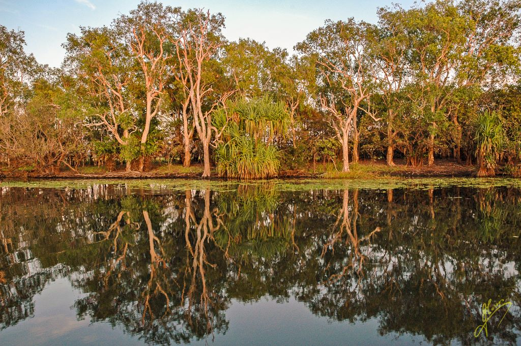 Yellow Waters Billabong, Kakadu National Park, Northern Territory.