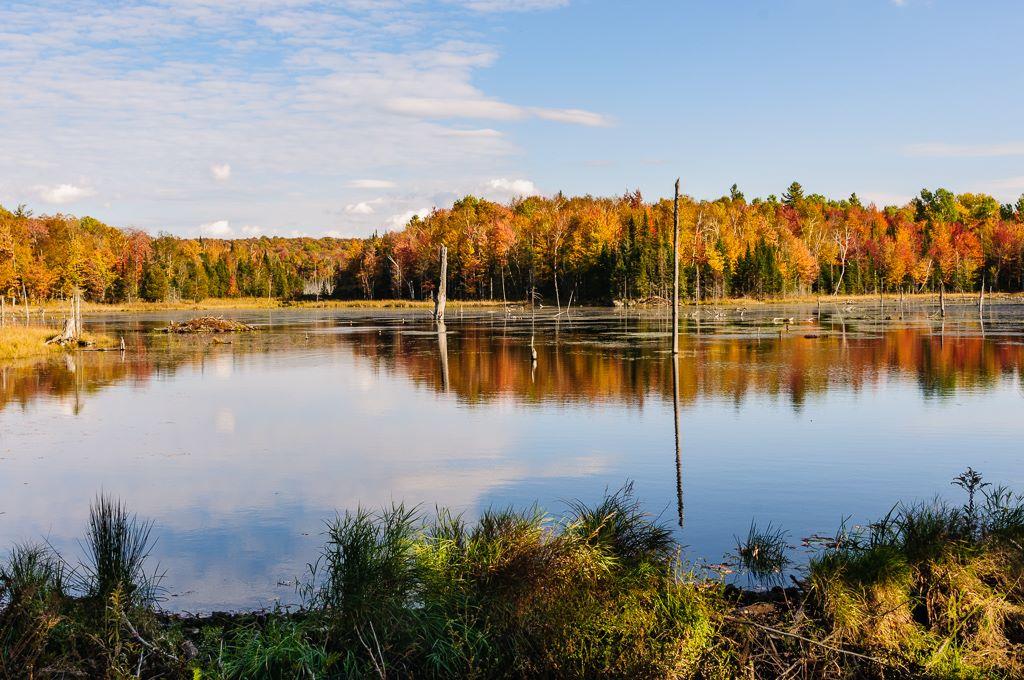 Ètang Martin, Parc national du Mont-Orford, Quebec.
