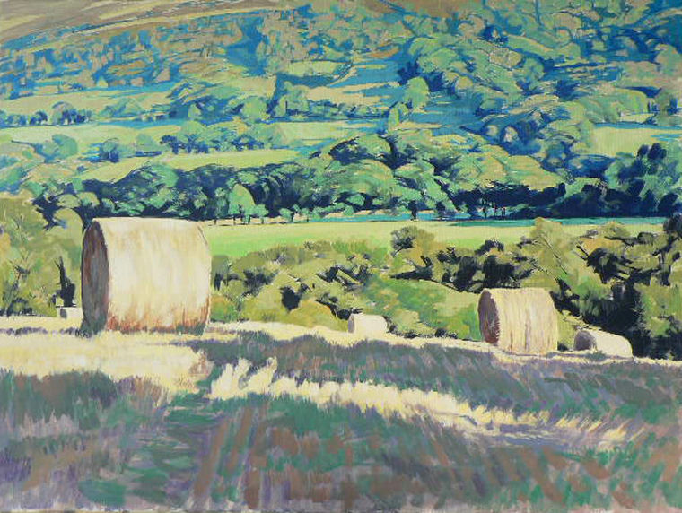 Bales in the Esk valley.