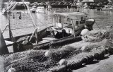 2nd Robin Millard Harbour Life The Fisherman's Quay