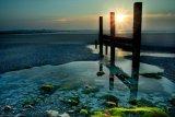 Alan Robilliard Contre Jour Groins seascape