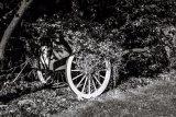 Alan Robilliard Wheels Wagon Wheel