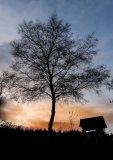 Berni Kerrigan  Open Winter Sunset