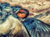 Jo Mahy Creative Bird and chicks painting