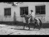 Martyn Elliston Black and White Cow Boy Cuba