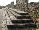 Robin Lines Castle Steps