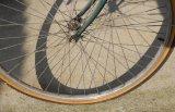 Robin Millard Wheels Cris Cross