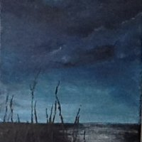 Midnight On The Marshes