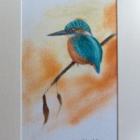 Kingfisher £35