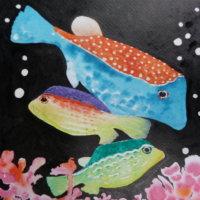 Tropical Box Fish