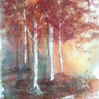 Silver Birch in Autumn £15