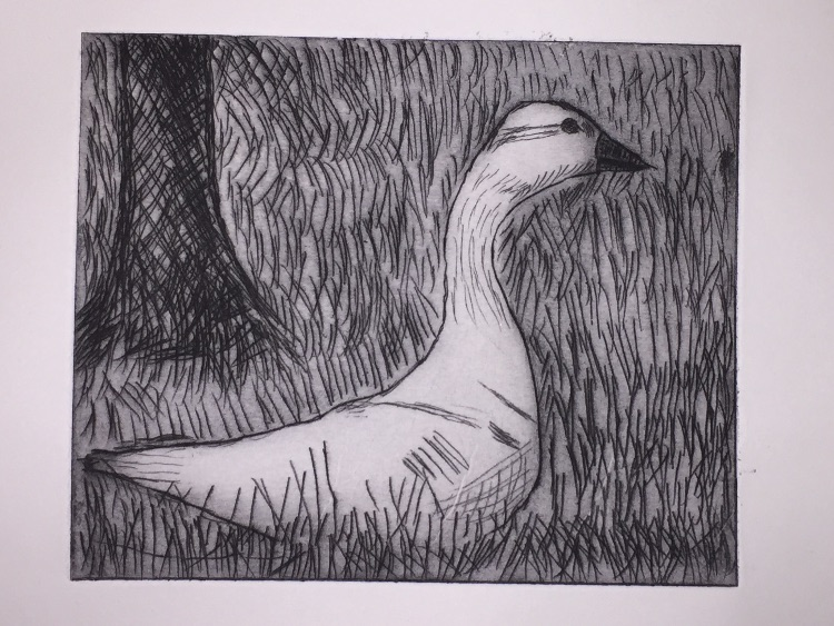Trespassing goose - Etching