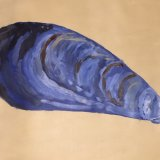 Mussel shell - with apologies to Katie Whitmore - bigger is not always better!