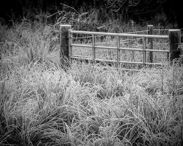 Frosted gate
