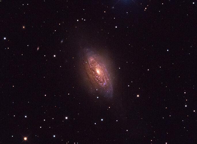 NGC 3521 in Leo
