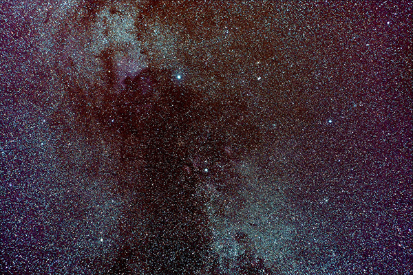 Top of Northern Cross in Cygnus including NGC 7000