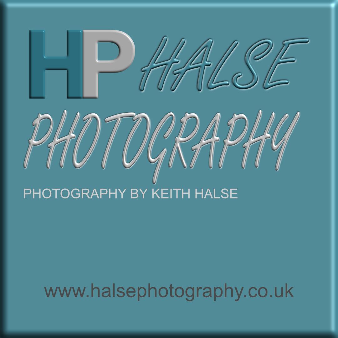 Halse Photography