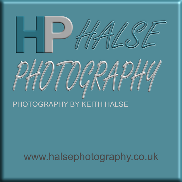 Halse Photography