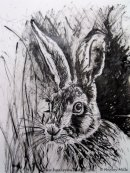 Hayley Mills Art