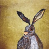 BROWN HARE h3214