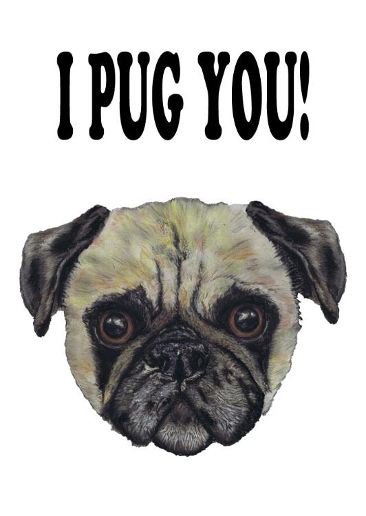 I PUG YOU!