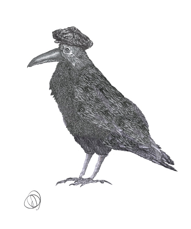 CROW in HAT