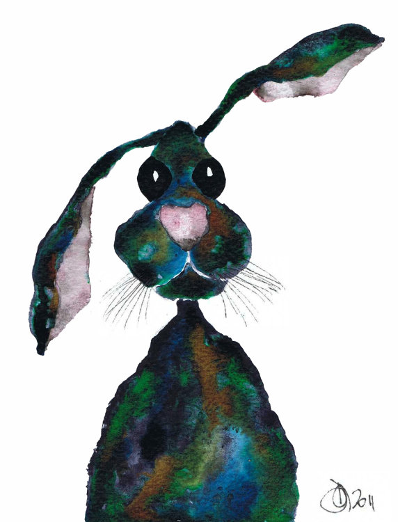 MULTI COLOUR HARE