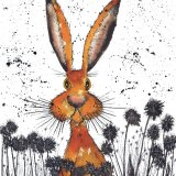 HARE IN FLOWERS