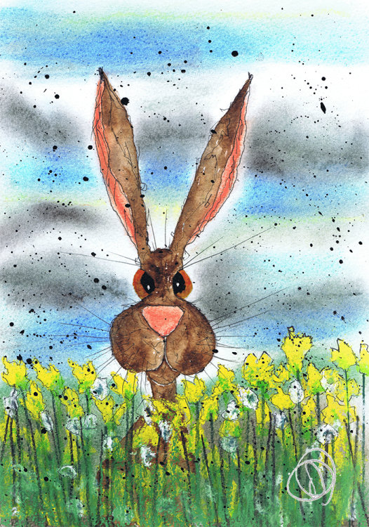 HARE IN DAFFODILS