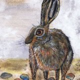 BROWN HARE h3012