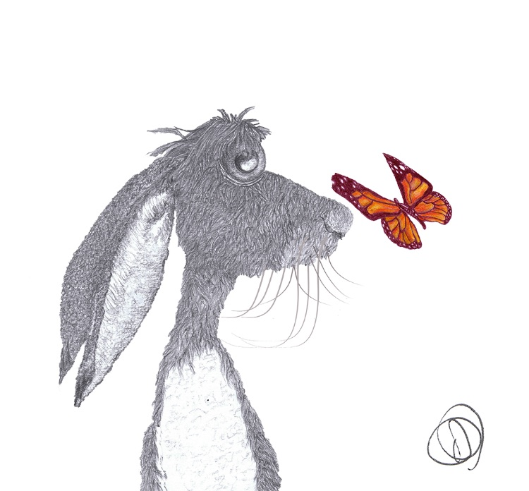 HARE with BUTTERFLY