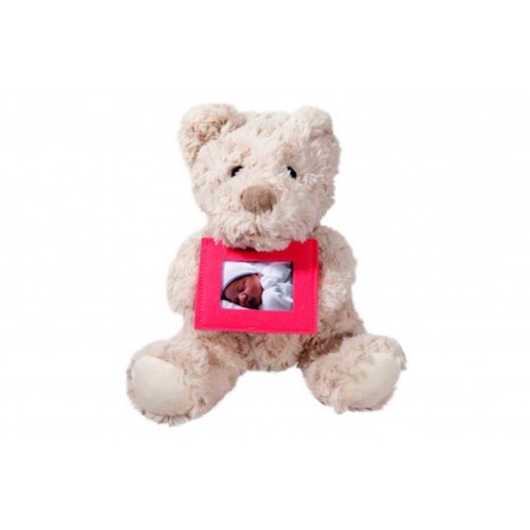 Soft Teddy with Felt Frame Classic - Pink