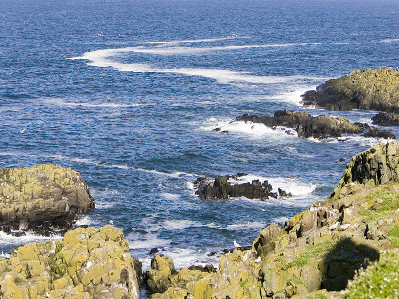 Coastal View from cliff top
