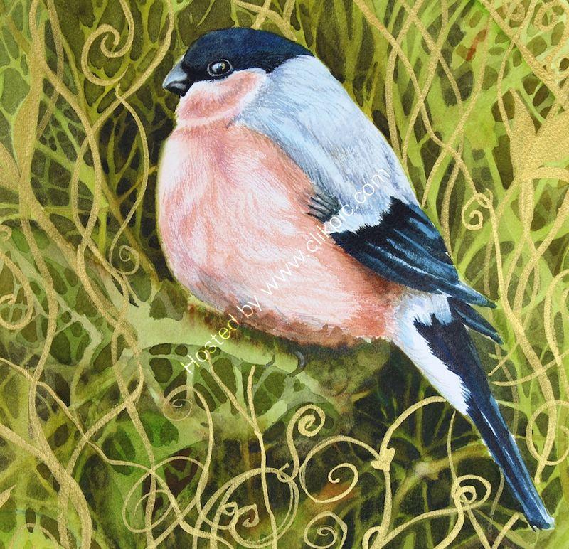 "'Female Bullfinch' watercolour, unframed dimensions 9""x9"""