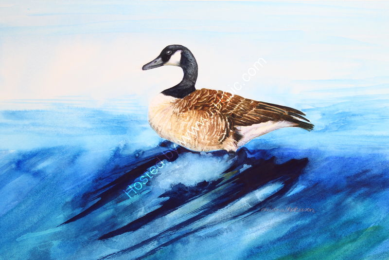 "'Canada Goose On The Weir Bakewell' watercolour, unframed dimensions 5.5""x7.5"""