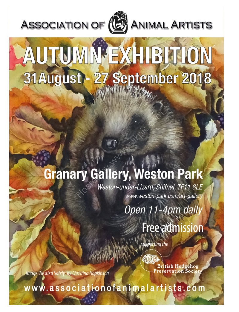AAA Autumn exhibition poster 2018