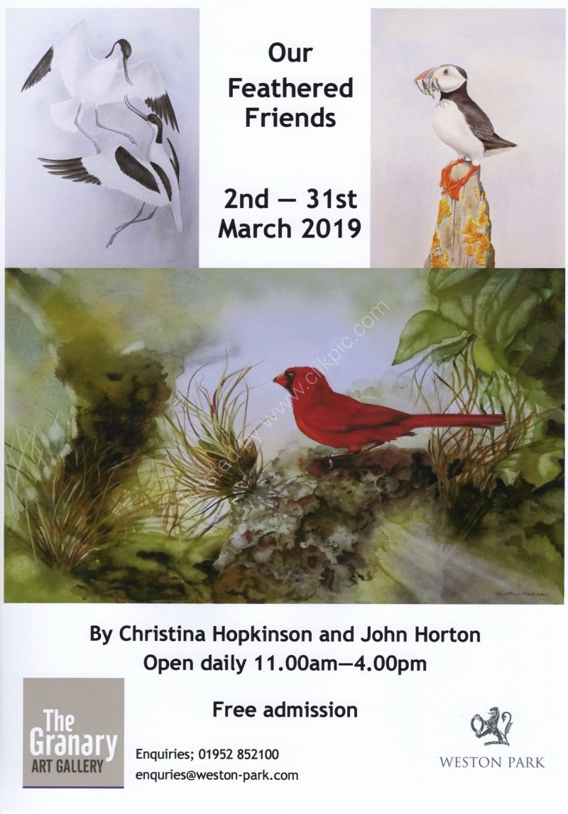 Our Feathered Friends exhibition announced for 2019