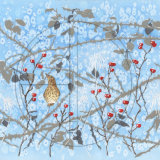 "THRUSH AND WINTER BERRIES Original Watercolour  £325.  Approx size 18"" x 26"""