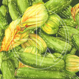 """COURGETTES  Original Watercolour £150.  Approx size 7.5"""" x 7.5"""" (by the way this looks great as a four caption print with the onions, aubergines and tomatoes  in a square frame for the contemporary kitchen - see Ratatouille!)"""