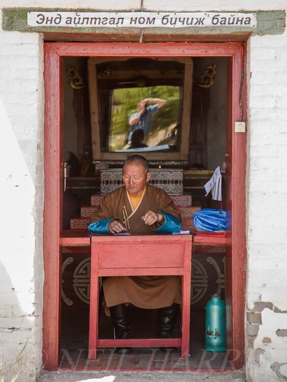 Mongolia - Kharkhorin sage