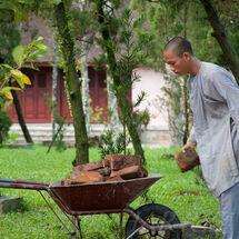 Vietnam - Brickie monk