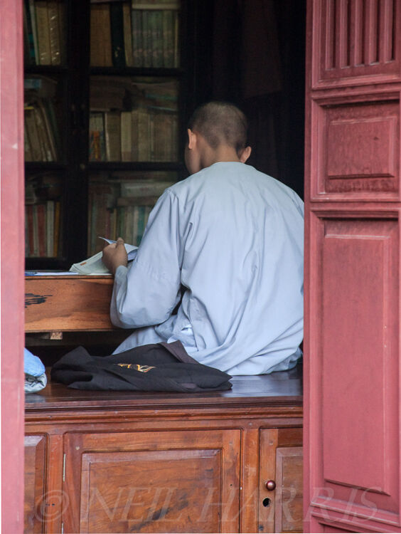 Vietnam - In the library