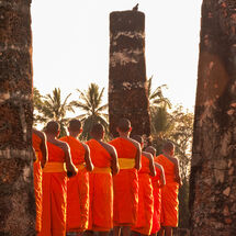 Thailand - Sukhothai saffron