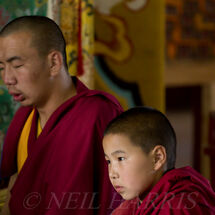Mongolia - Novice monk