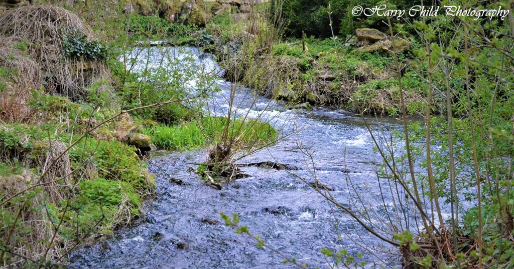 Flowing Cascade