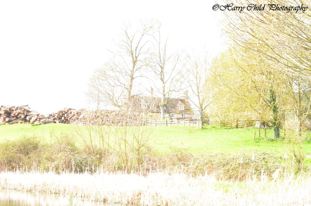 Idyllic Country Cottage